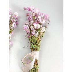 Suszone kwiatki - Kocanka -...