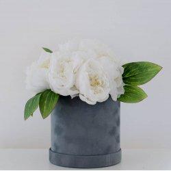 Flowerbox piwonie (kwiaty...
